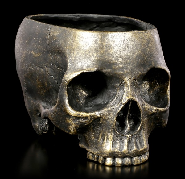 Human Skull Flowerpot