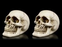 Menschliche Totenköpfe - 2er Set