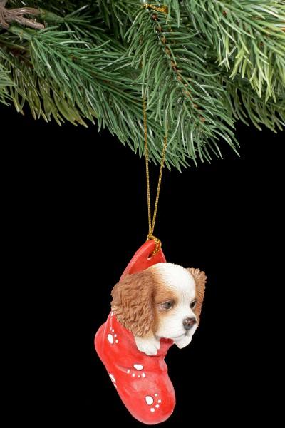 Christbaumschmuck Hund - King Charles Spaniel im Strumpf