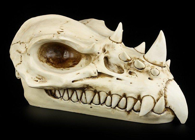 Dragon Skull - Totenkopf