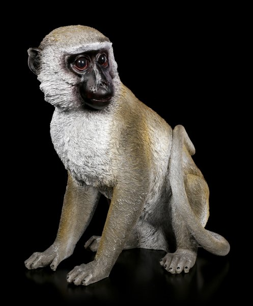 Garden Figurine Monkey - Grivet