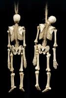 Skeleton Figurines for Hanging - Set of 2