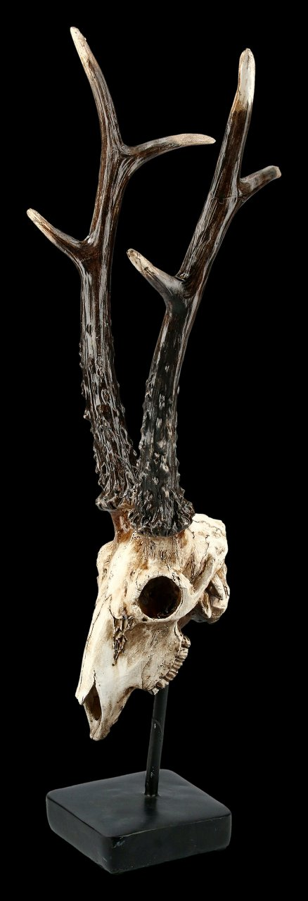 Rehbock Totenkopf auf Metall Ständer