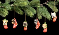 Christmas Tree Decoration Dog - Pug in Stocking
