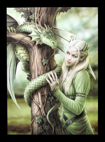 Large Canvas with Dragon - Kindred Spirits