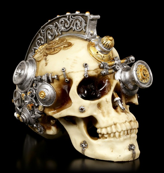 Steampunk Skull with Iroquois