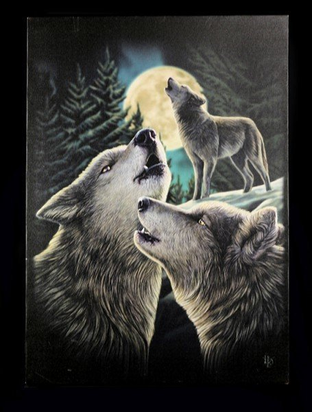 Large Canvas - Wolf Song by Lisa Parker