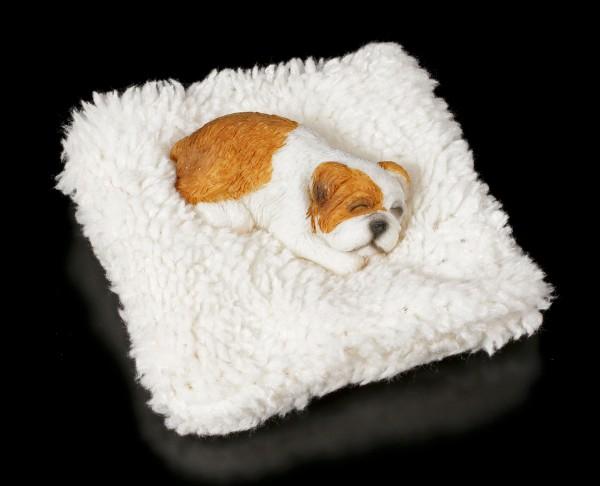 Kleine Hunde Figur schlafend auf Decke