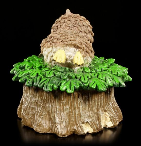 Box - Owl lies on Tree Stump
