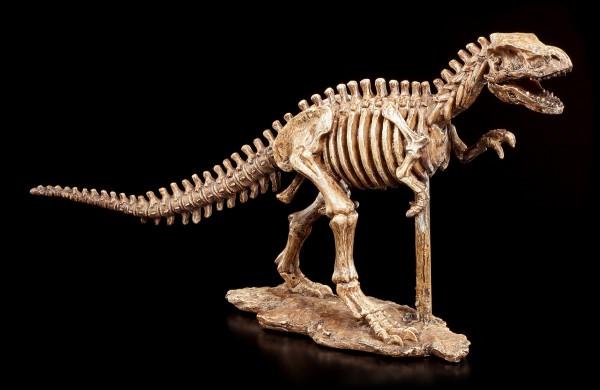 Dinosaurier Figur - Tyrannosaurus Rex Skelett