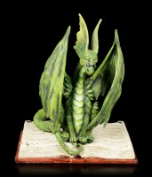Drachen Figur - Scholar Dragon