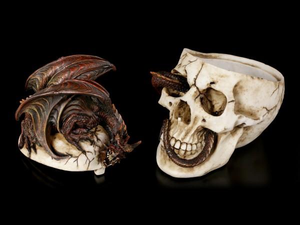 Totenkopf Schatulle mit Drache - Draconic Craniotomy