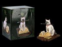 Cat Figurine - Hocus Pocus