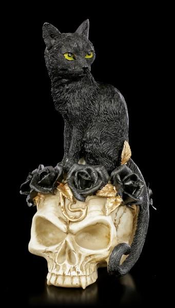 Alchemy Totenkopf - Katze auf Schädel