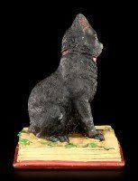 Witches Cat Figurine - Eclipse