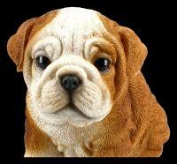 Dog Figurine - Bulldog