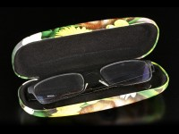 Glasses Case with Cat - Summer Cat