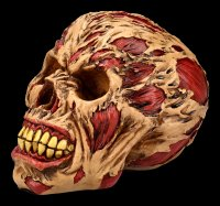 Zombie Skull - The Hoard