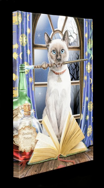 Small Canvas with Cat - Hocus Pocus