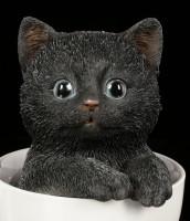 Schwarzes Kätzchen in Tasse