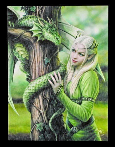 Small Canvas - Kindred Spirits by Anne Stokes