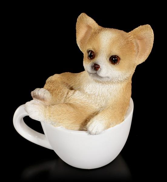 Hunde Figur mini - Chihuahua Welpe in Tasse