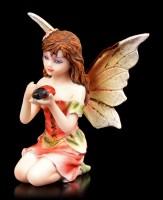 Kleine Elfen Figur - Bigesia mit Marienkäfer
