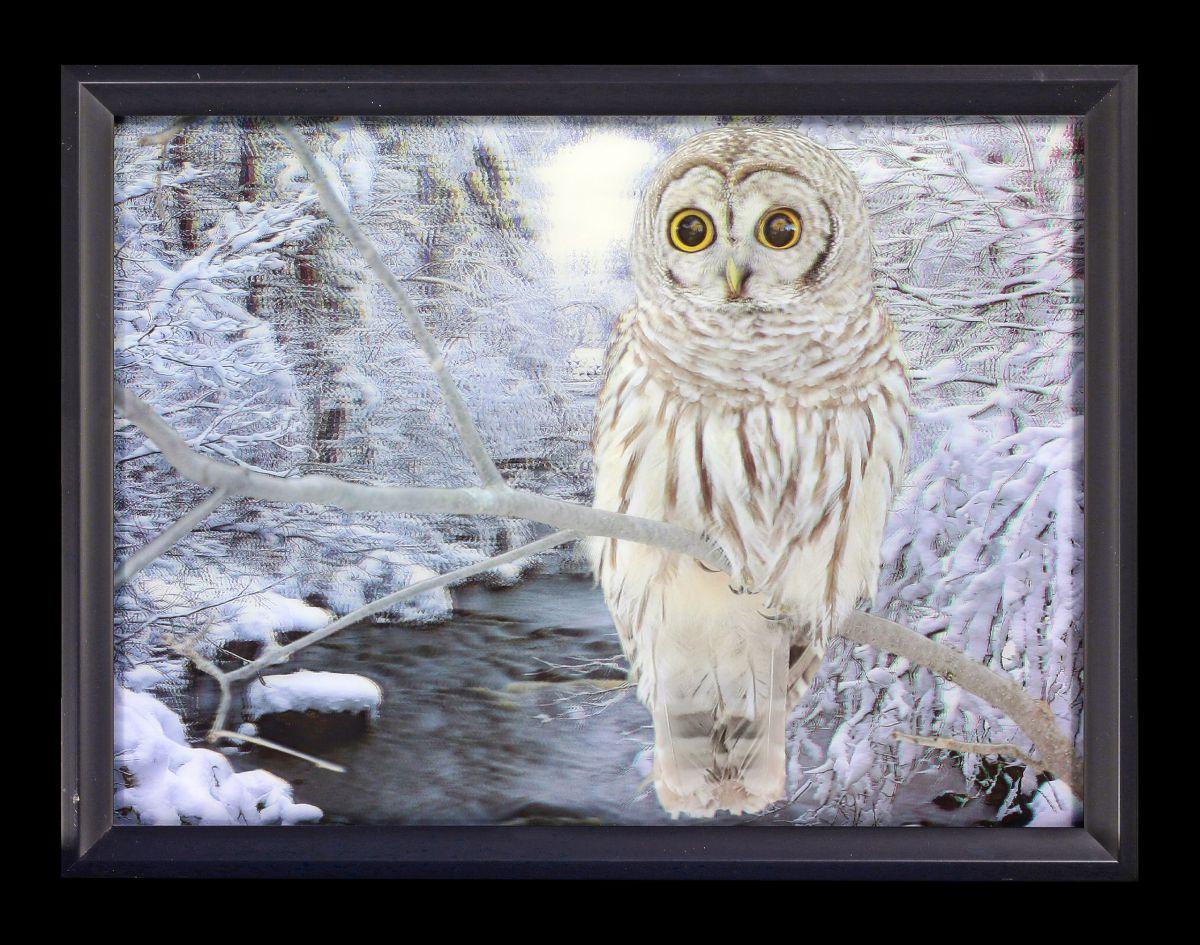 3d bild im rahmen schneeeule im wald fantasy bild winter deko ebay. Black Bedroom Furniture Sets. Home Design Ideas