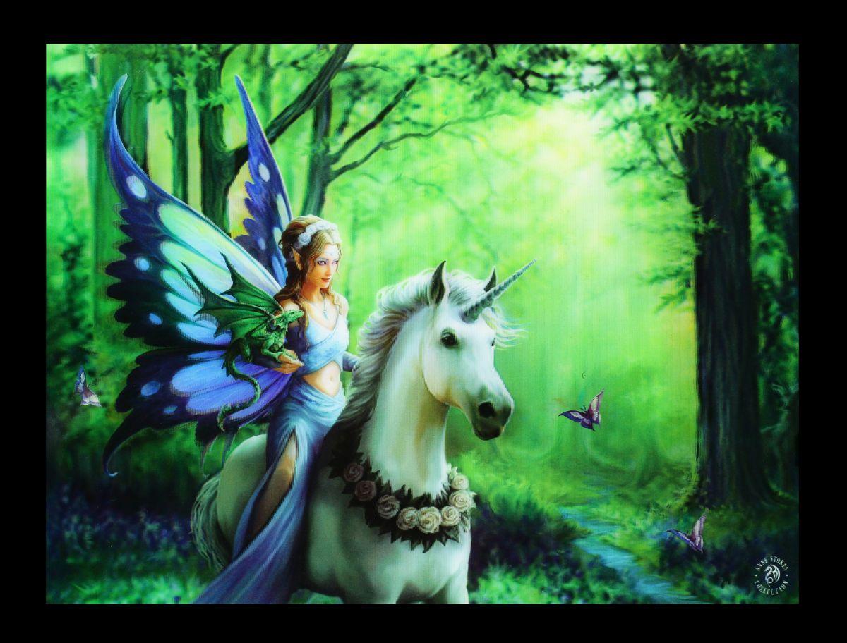 3d bild mit einhorn  realm of enchantment  anne stokes