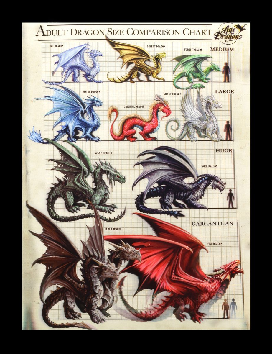 3D-Bild Anne Stokes Drachen - Dragon Size Comparison Chart - Fantasy ...