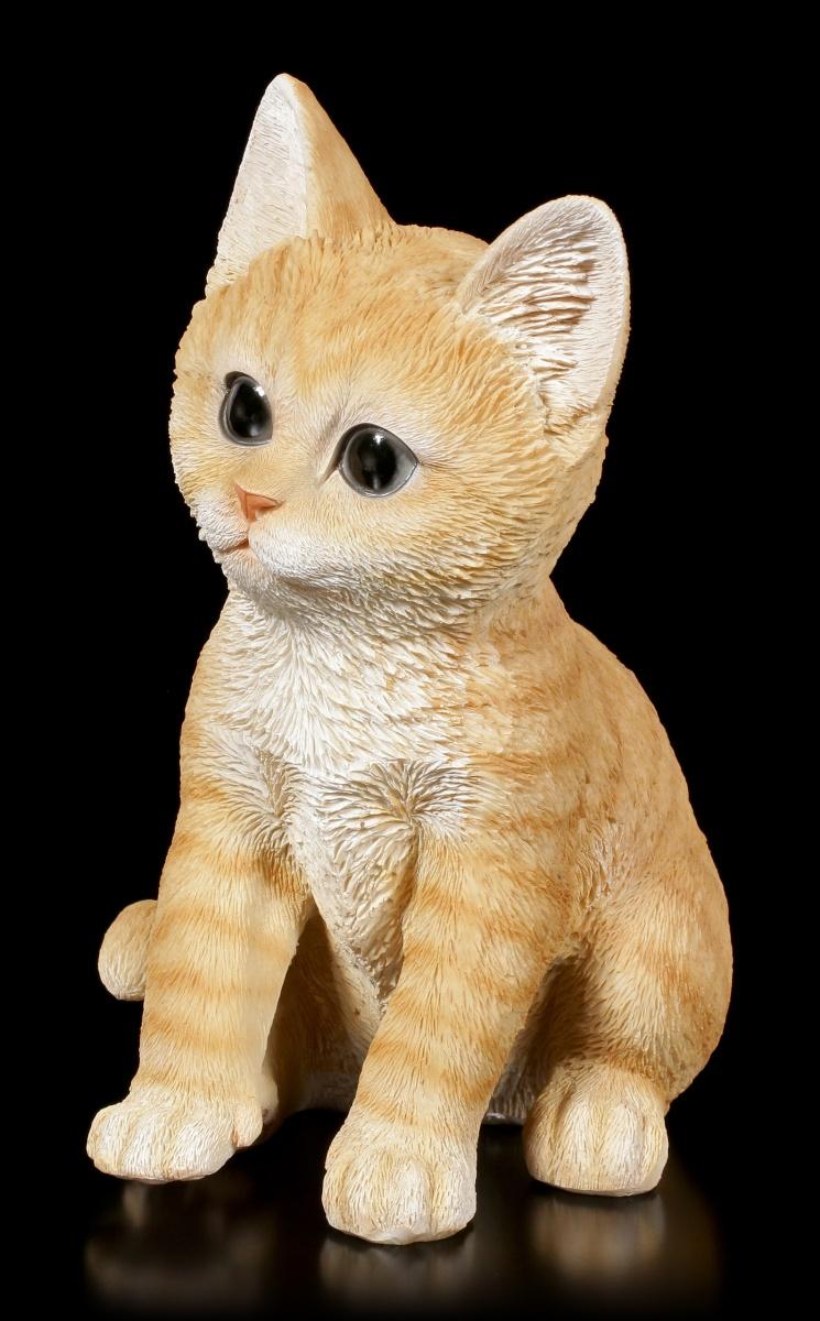 Details Zu Baby Katzen Figur Orange Tabby Sitzend Niedliches Kätzchen Deko Geschenk
