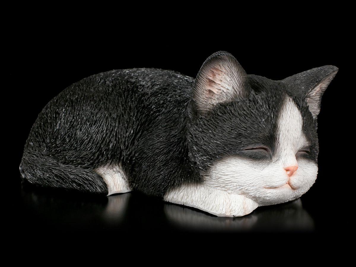 Details Zu Baby Katzen Figur Schlafend Schwarz Weiß Niedlich Kätzchen Deko Geschenk