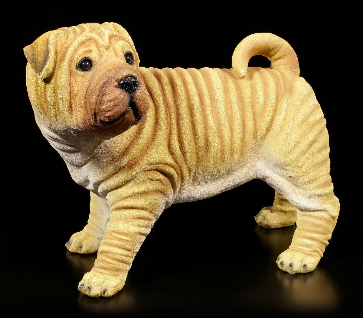 STATUA DA GIARDINO CANE - shar-pei gartenhund Figura RUGA ...