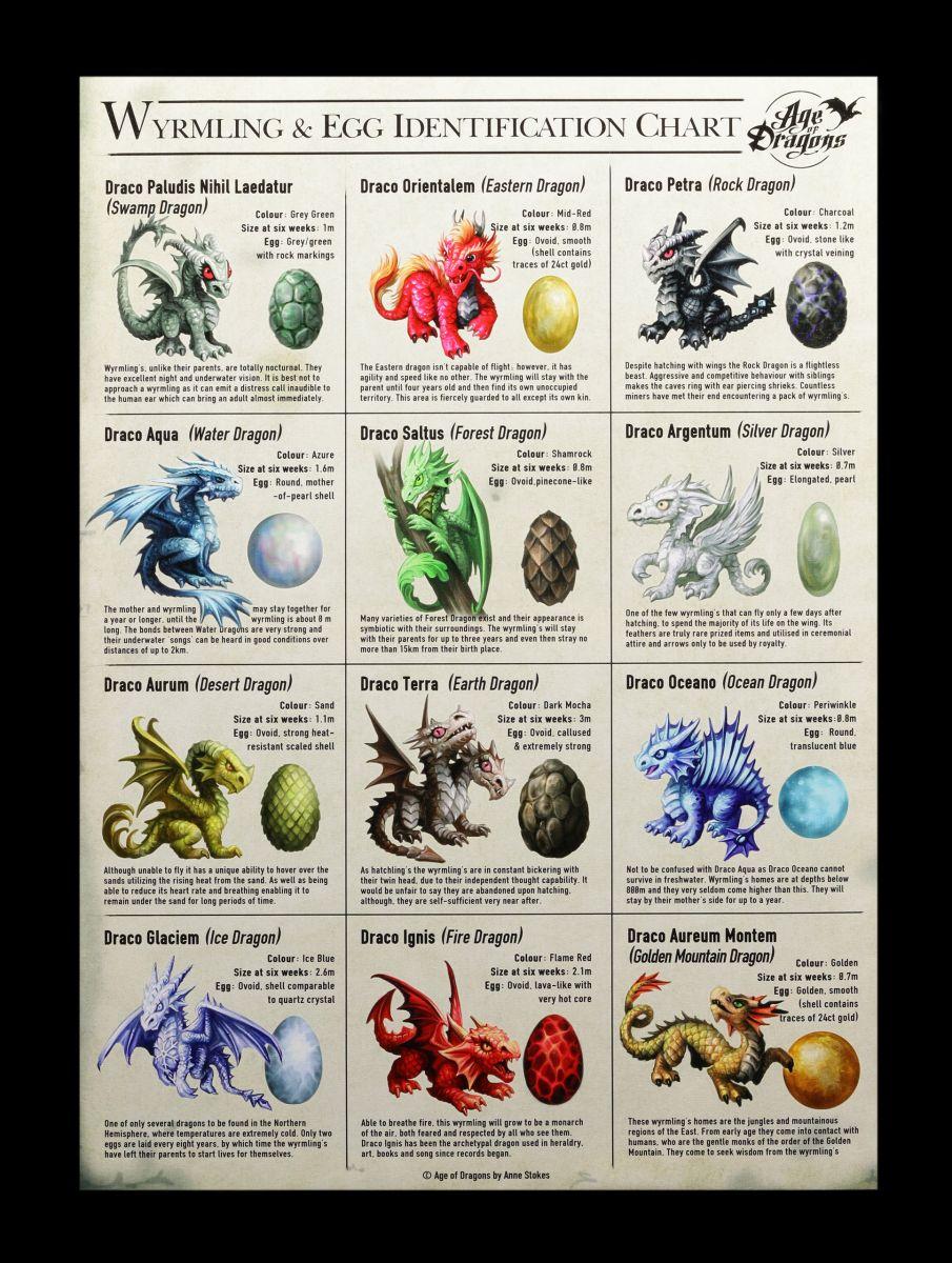 Drachen-Arten Identifikation Große Leinwand Anne Stokes Wanddeko Bild Druck