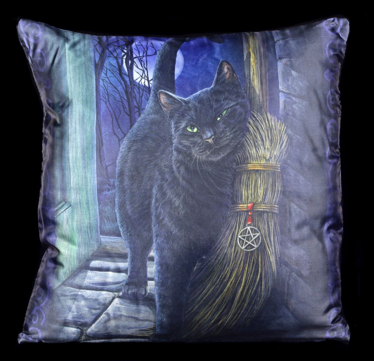 kissen mit katze a brush with magic fantasy dekokissen lisa parker ebay. Black Bedroom Furniture Sets. Home Design Ideas