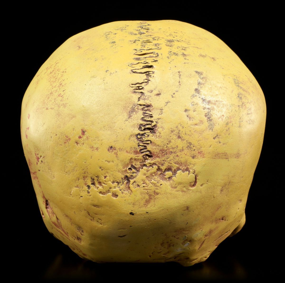 Menschlicher Schädel ohne Unterkiefer Totenkopf Figur Totenschädel Deko Mayer